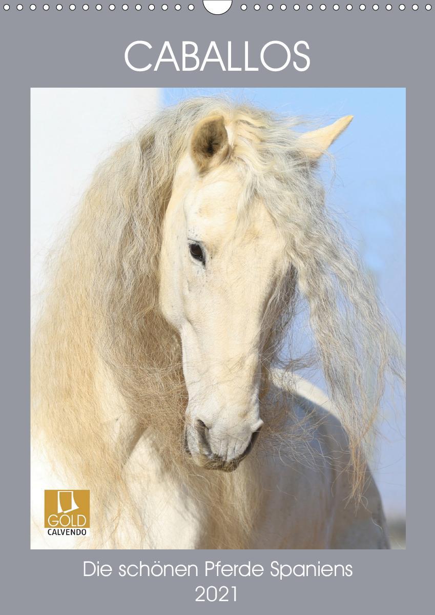Caballos - Die schönen Pferde Spaniens (Wandkalender 2021 DIN A3