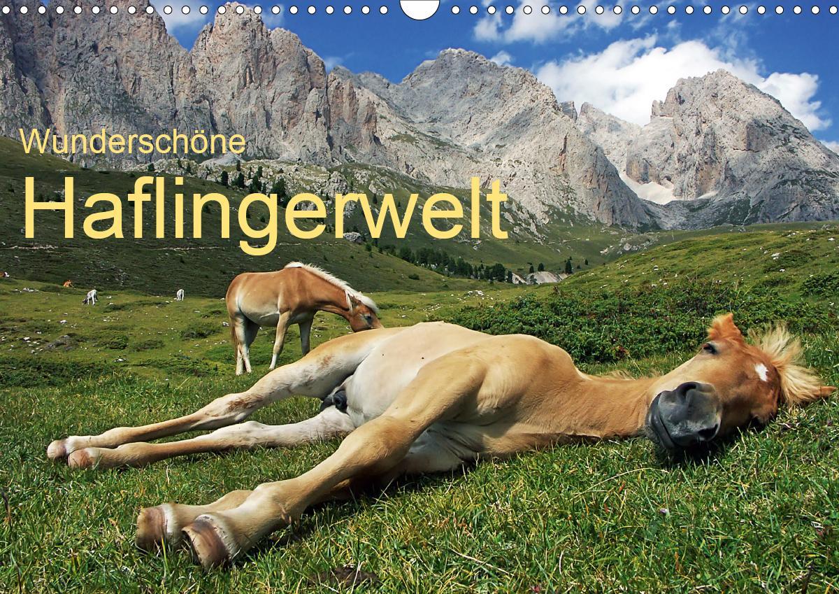 Wunderschöne Haflingerwelt (Wandkalender 2021 DIN A3 quer)