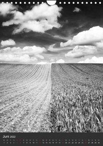 Natur in Schwarz und Weiß (Wandkalender 2022 DIN A4 hoch)