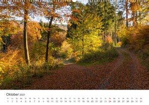 Sauerland - sanfte Berge, endlose Wälder und tiefblaue Seen (Wan