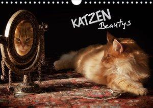 KATZEN Beautys (Wandkalender 2021 DIN A4 quer)