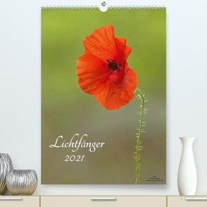 Lichtfänger (Premium, hochwertiger DIN A2 Wandkalender 2021, Kun