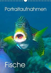 Portraitaufnahmen - Fische (Wandkalender 2021 DIN A3 hoch)