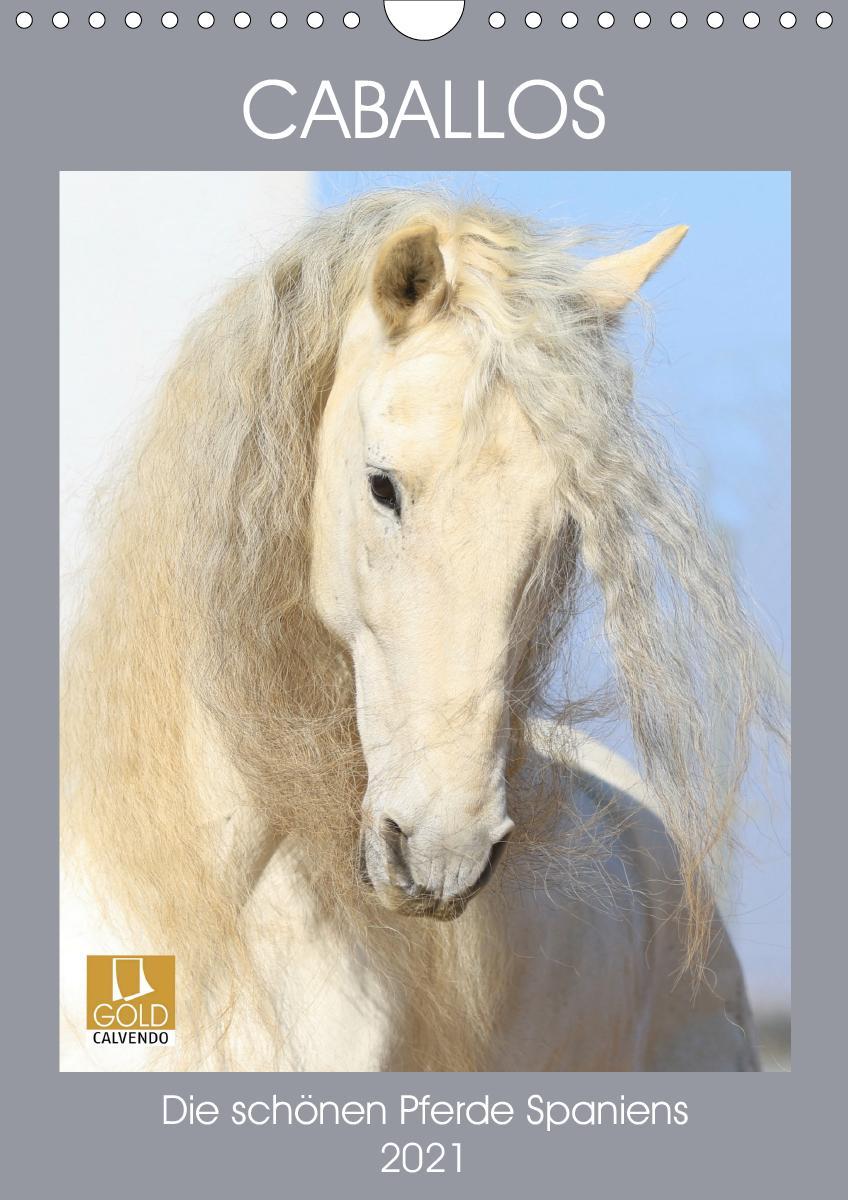 Caballos - Die schönen Pferde Spaniens (Wandkalender 2021 DIN A4