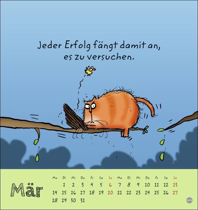 Catzz Postkartenkalender 2022