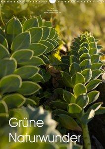 Grüne Naturwunder (Wandkalender 2021 DIN A3 hoch)