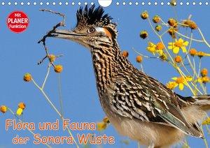 Flora und Fauna der Sonora Wüste (Wandkalender 2021 DIN A4 quer)