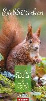 Eichhörnchen Familienplaner Kalender 2022