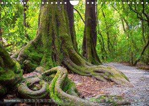 Awesome Tracks  Hiking on New Zealand\'s South Island (Wall Calendar 2022 DIN A4 Landscape)