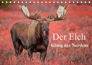 Der Elch - König des Nordens (Tischkalender 2021 DIN A5 quer)