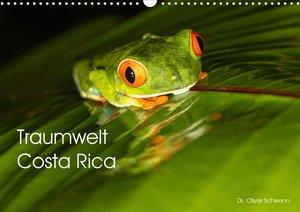 Traumwelt Costa Rica (Wandkalender 2021 DIN A3 quer)