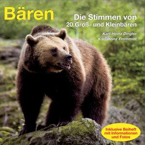 Bären, Audio-CD