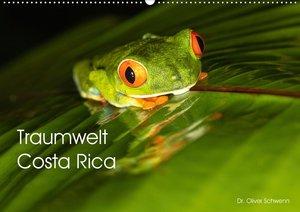Traumwelt Costa Rica (Wandkalender 2021 DIN A2 quer)