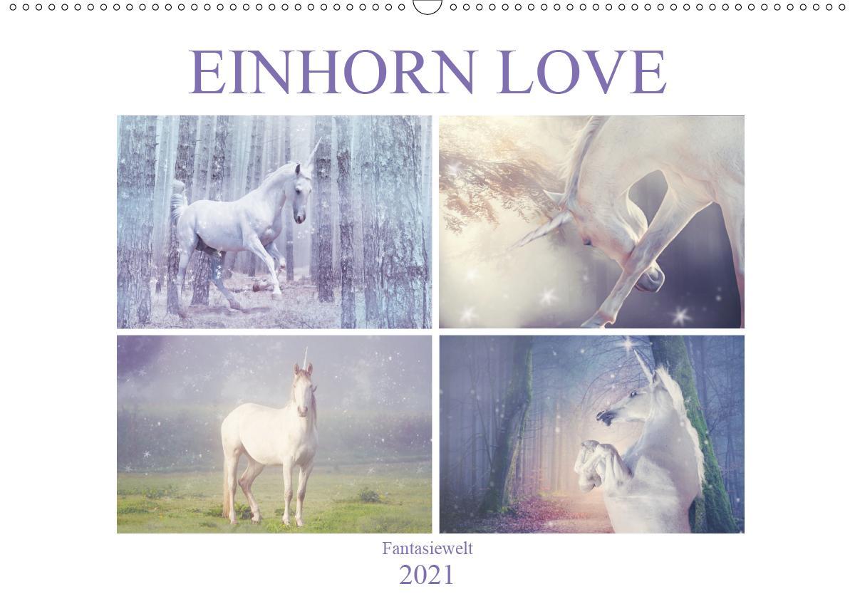 Einhorn Love - Fantasiewelt (Wandkalender 2021 DIN A2 quer)