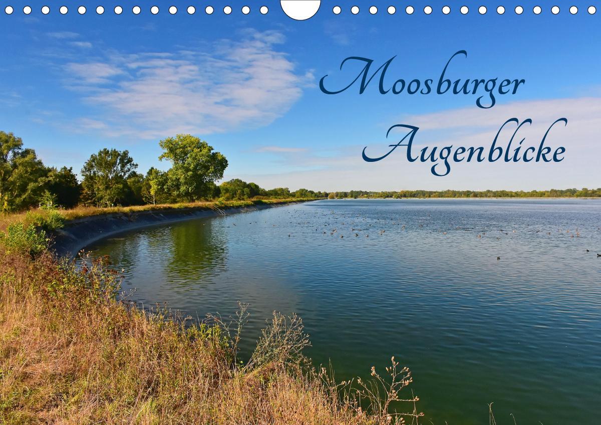 Moosburger Augenblicke (Wandkalender 2021 DIN A4 quer)
