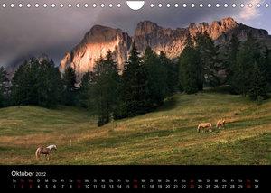 Wunderschöne Haflingerwelt (Wandkalender 2022 DIN A4 quer)