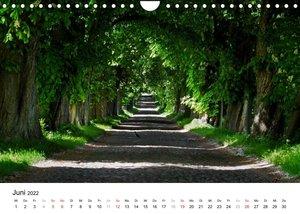 Rügen (Wandkalender 2022 DIN A4 quer)