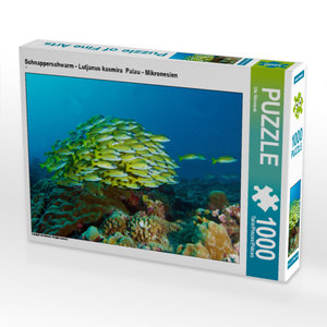 CALVENDO Puzzle Fischschw?rme sind immer imposant! 1000 Teile Puzzle quer