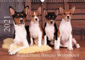 Wunderbare Basenji Welpenzeit (Wandkalender 2021 DIN A3 quer)