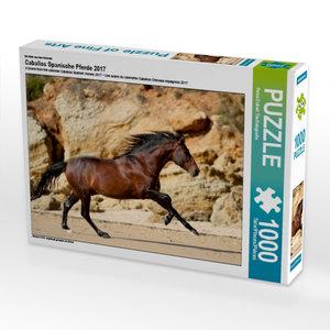 Ein Motiv aus dem Kalender Caballos Spanische Pferde 2017 1000 T