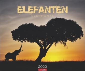 Elefanten Kalender 2022