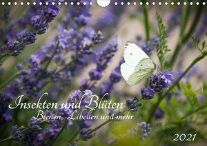 Insekten und Blüten - Bienen, Libellen und mehr (Wandkalender 20