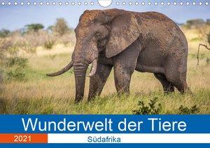 Wunderwelt der Tiere - Südafrika (Wandkalender 2021 DIN A4 quer)