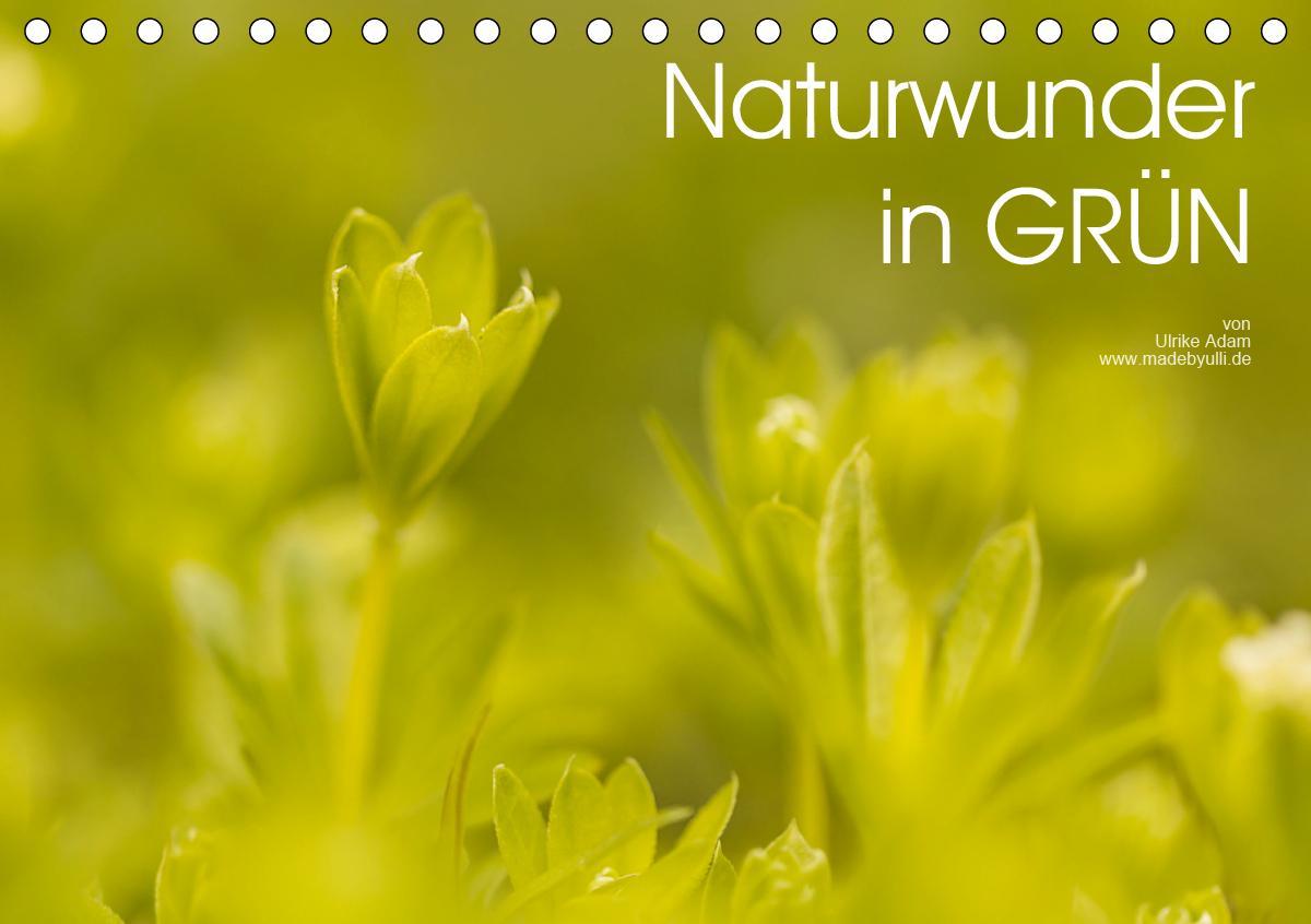 Naturwunder in GRÜN (Tischkalender 2021 DIN A5 quer)