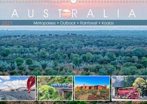 Australia - Metropolises ? Outback ? Rainforest ? Koalas (Wall C
