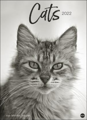 Wegler Cats Edition Kalender 2022