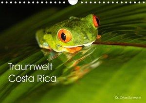 Traumwelt Costa Rica (Wandkalender 2021 DIN A4 quer)