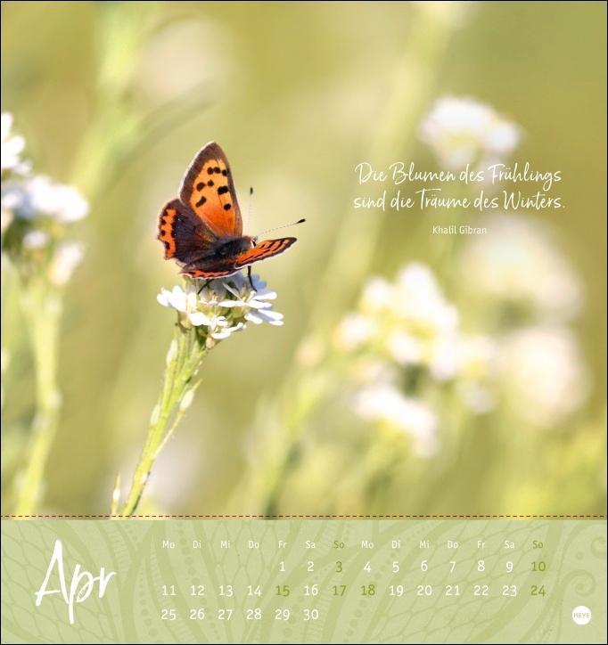 Ich wünsch dir ... Zeit zum Träumen Postkartenkalender 2022