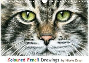 Coloured Pencil Drawings (Wandkalender 2021 DIN A4 quer)