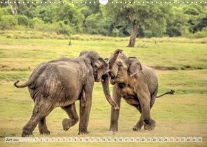 Sri Lanka - Tempel, Tee und Elefanten (Wandkalender 2022 DIN A3 quer)