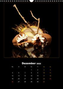 Vegan Food Kalender ? Obst und Gemüse auf Schwarz (Wandkalender 2022 DIN A3 hoch)