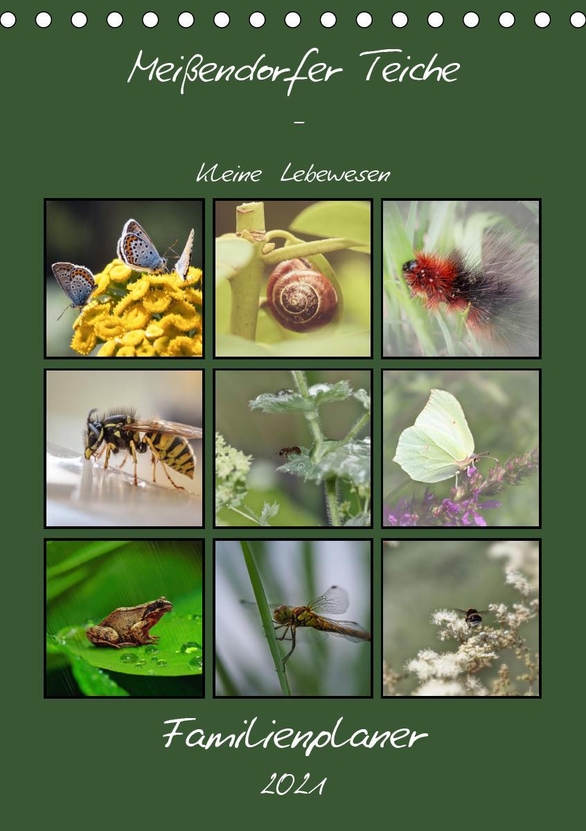 Meißendorfer Teiche - Kleine Lebewesen (Tischkalender 2021 DIN A