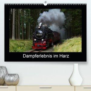 Dampferlebnis im Harz (Premium, hochwertiger DIN A2 Wandkalender