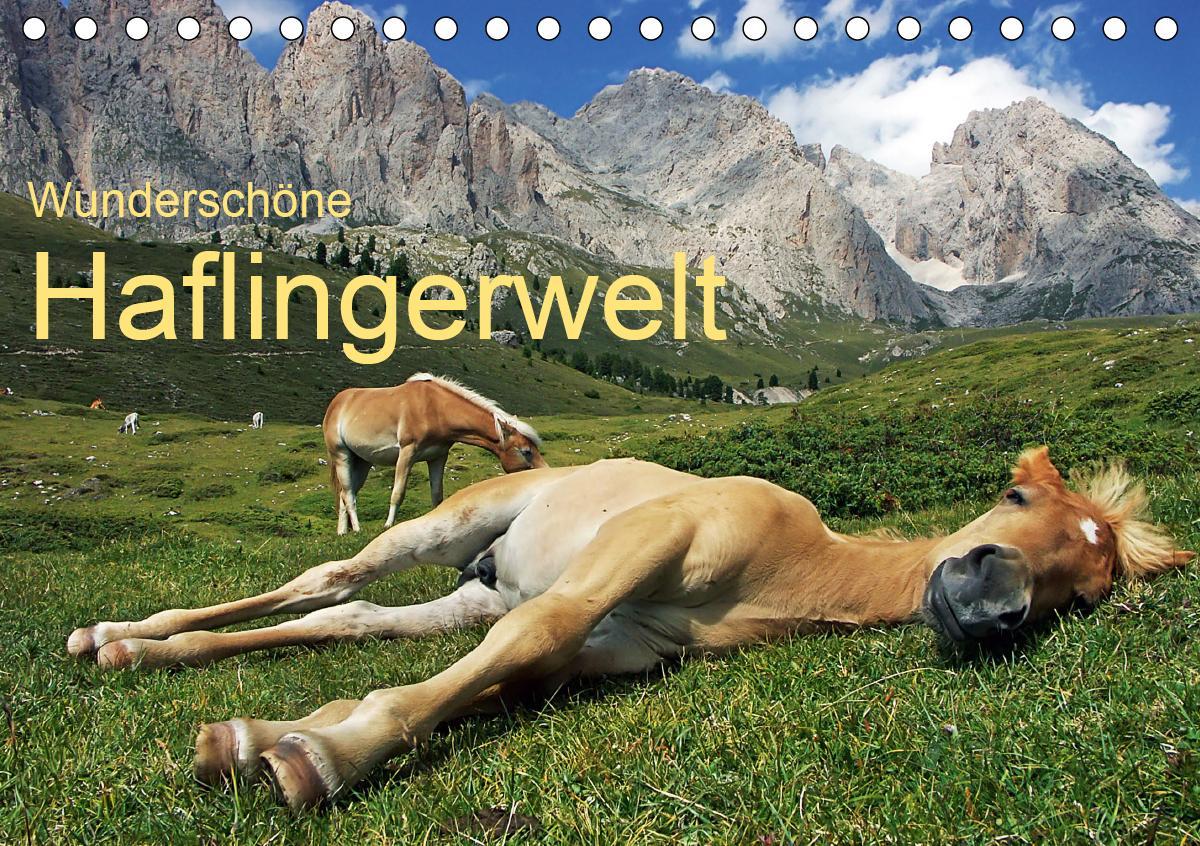 Wunderschöne Haflingerwelt (Tischkalender 2021 DIN A5 quer)