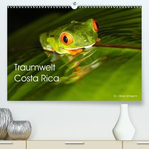 Traumwelt Costa Rica (Premium, hochwertiger DIN A2 Wandkalender