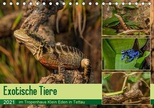 Exotische Tiere im Tropenhaus Klein Eden in Tettau (Tischkalende