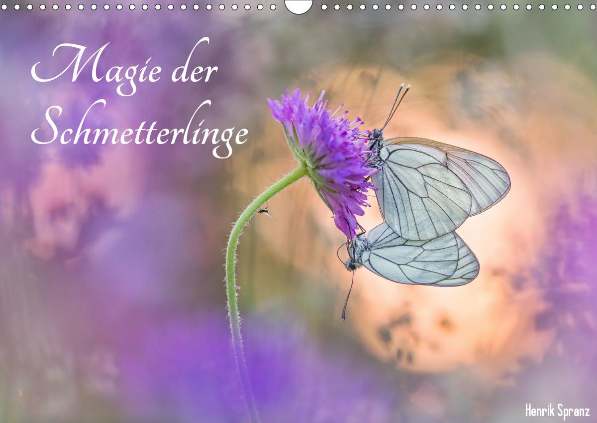 Magie der Schmetterlinge (Wandkalender 2021 DIN A3 quer)
