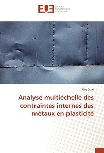Analyse multiéchelle des contraintes internes des métaux en plasticité