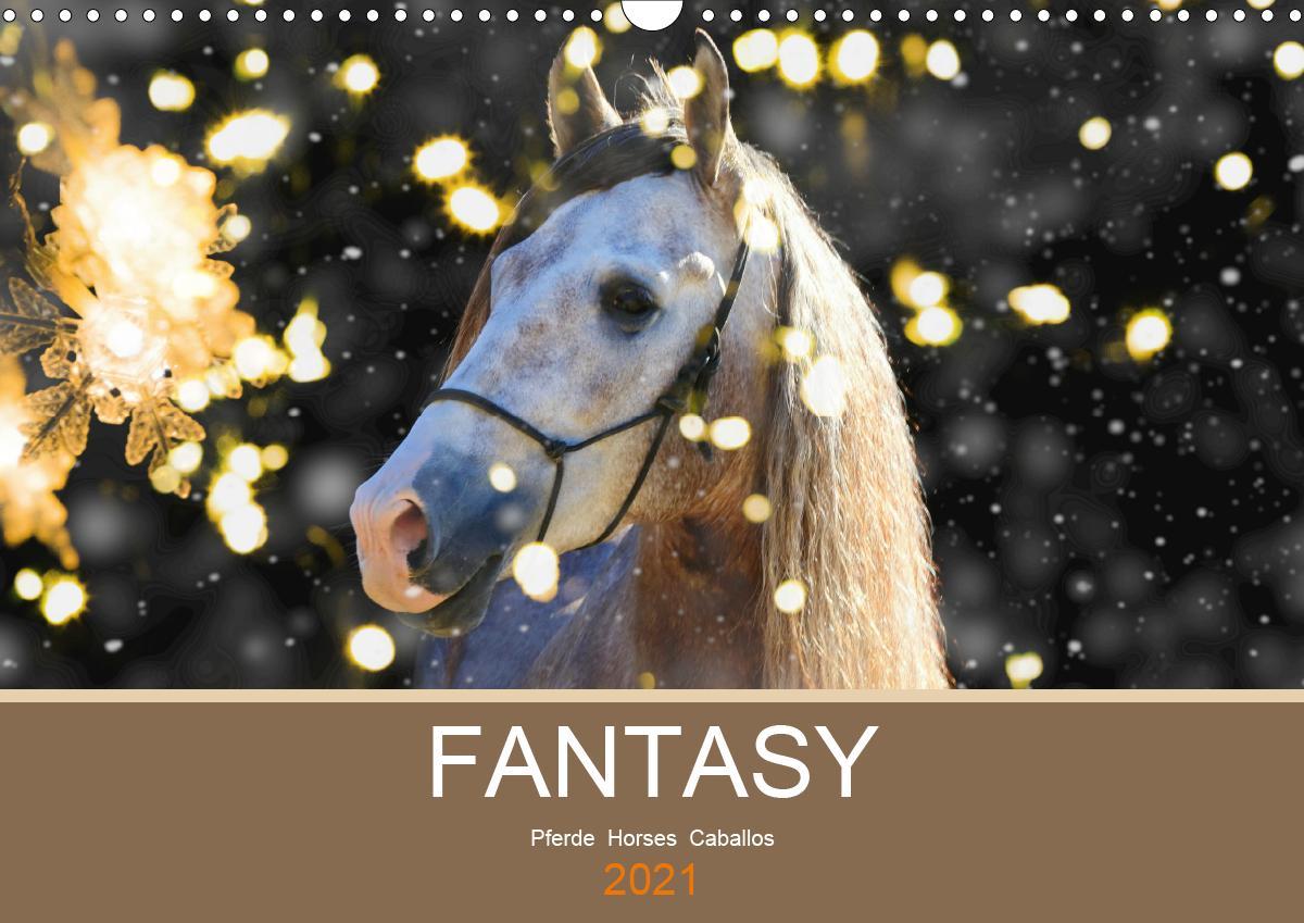 FANTASY Pferde Horses Caballos (Wandkalender 2021 DIN A3 quer)