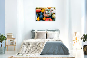 Premium Textil-Leinwand 90 cm x 60 cm quer Bunte K?rbis Vielfalt