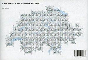 Swisstopo 1 : 25 000 Schiers