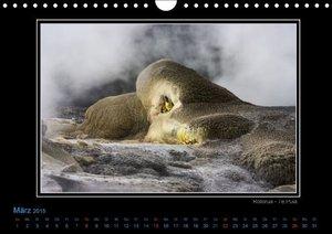 Ulven Photography - Wiebke Schröder, L: Neuseeland 2015 - Bi