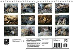 Wildschweins Kinderstube 2017 (Wandkalender 2017 DIN A4 quer)