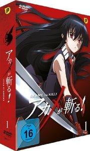 Akame ga Kill - DVD Box 1 (2 DVDs)