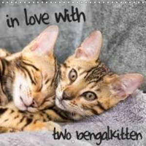 in love with 2 bengal kittens (Wall Calendar 2015 300 × 300 mm S