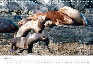 Tierra del Fuego UK-Version (Wall Calendar 2015 DIN A4 Landscape